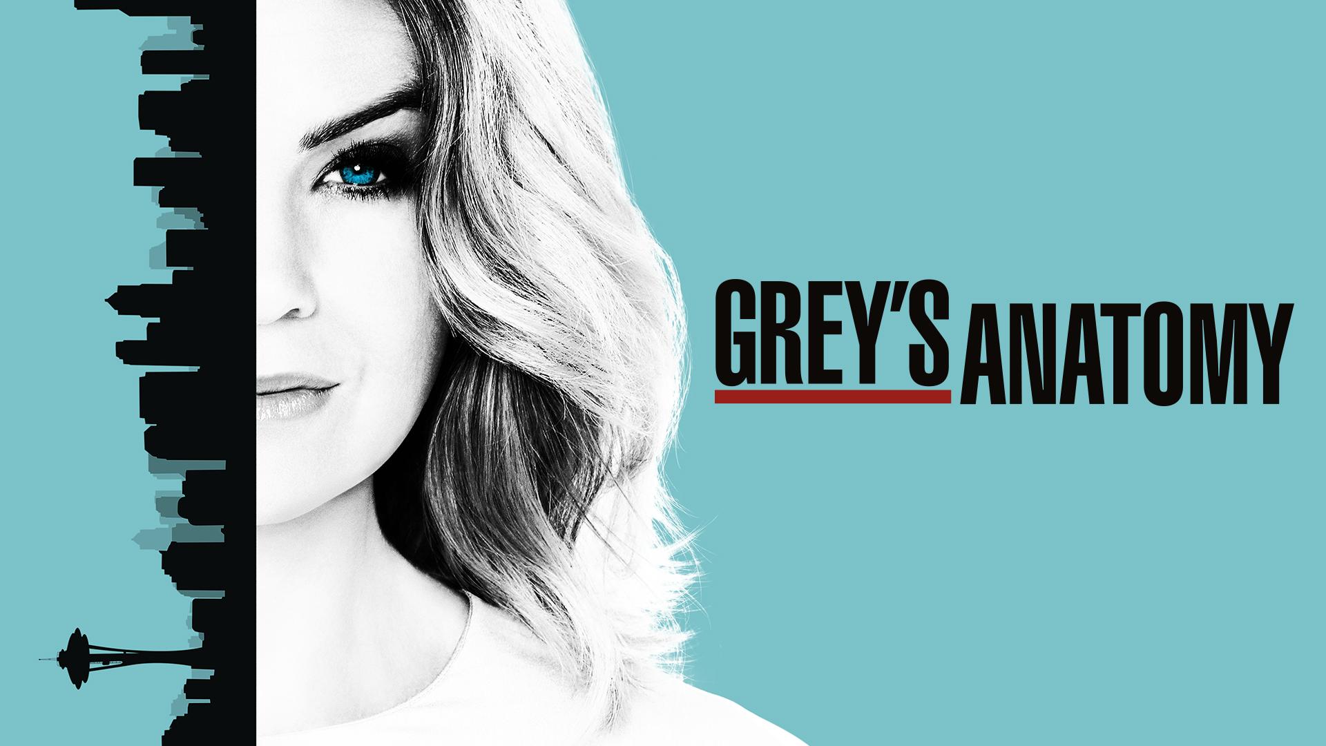 Grey's Anatomy Show Banner